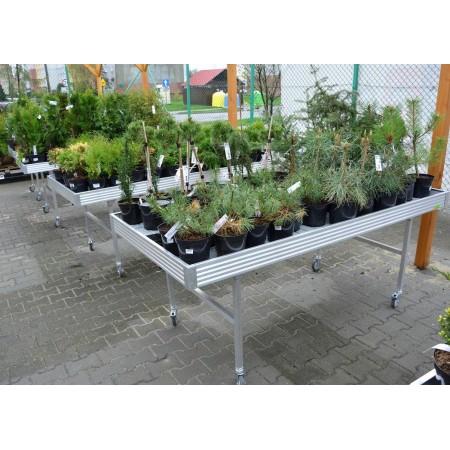 """Stół zalewowy 1 x 2 m,""""Floks"""", do ekspozycji kwiatów, mobilny, na kołach, wystawowy, z nadstawką lub bez FLOKS Stoły i wózki na"""